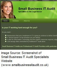 How Small Business IT Audit Specialists Website Nails Niche Marketing