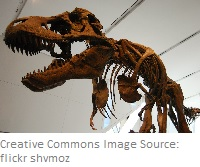 How IT Marketing Managers Can Avoid Becoming Dinosaurs
