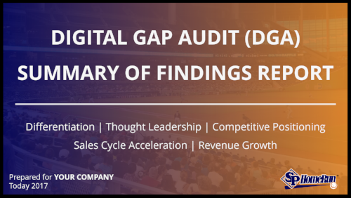 Digital Gap Audit (DGA) Summary of Findings Report